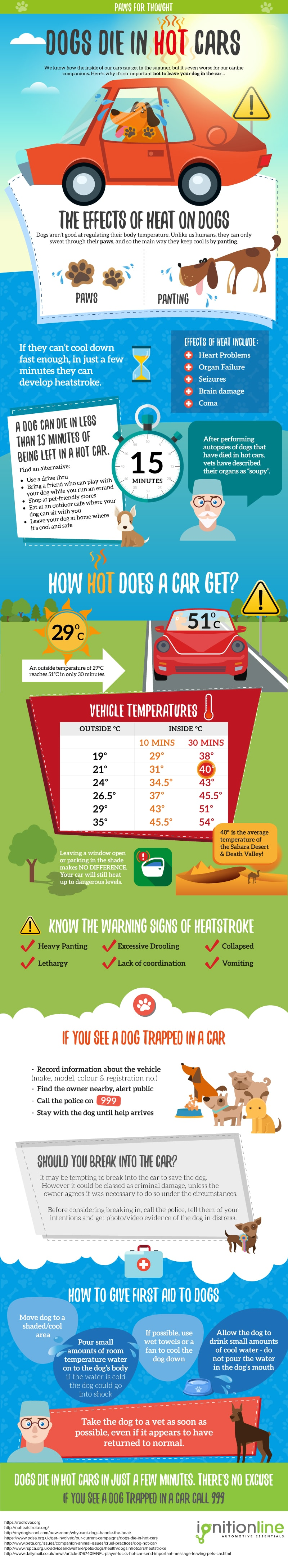 Dogs in hot cars Infographic